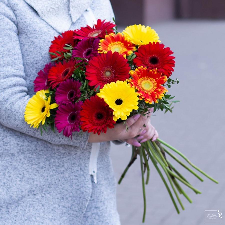 Гербера микс - Моно-букеты - Букеты - Milotta. Магазин цветов